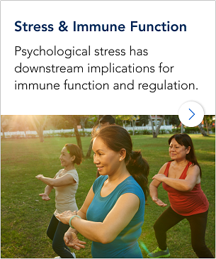 Stress & Immune Function 305x365_InactiveState